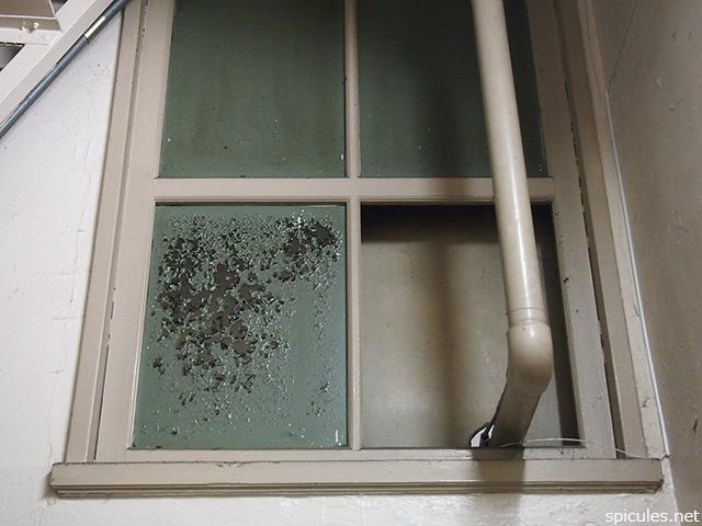 奥野ビル窓