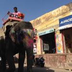 インドってこんなトコ。旅して知ったおもしろインド。