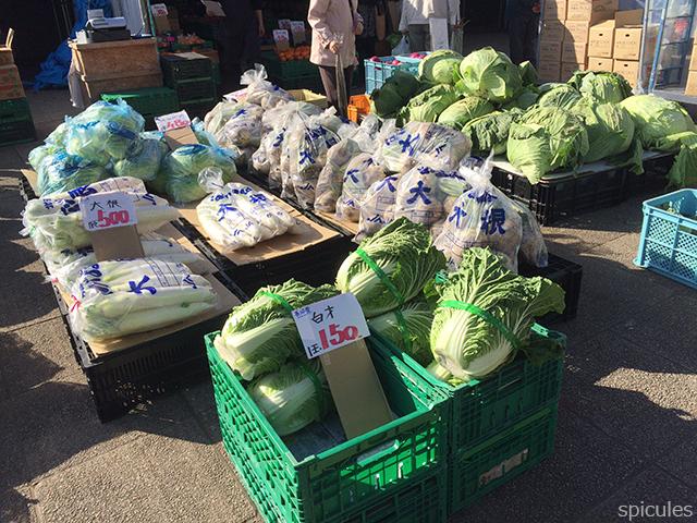 道の駅マオイの丘野菜